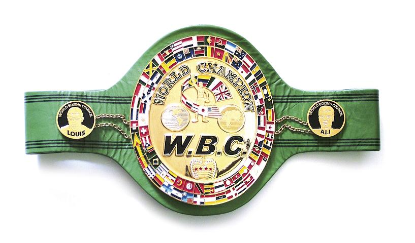 Image result for wbc belt