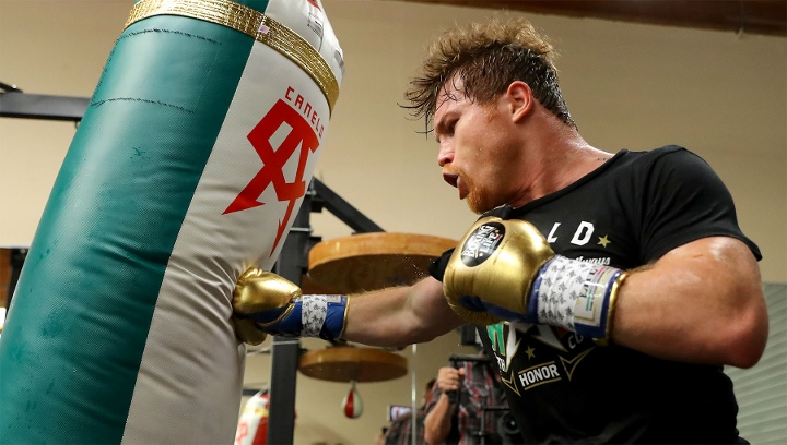 Canelo1 - Canelo Alvarez Loses Round One Of Lawsuit Claim, Now Has Until September 28th To Amend